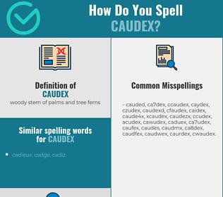 Correct spelling for caudex