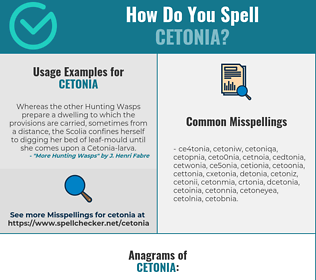 Correct spelling for cetonia