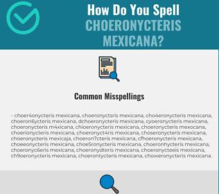 Correct spelling for Choeronycteris Mexicana