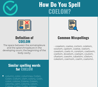 Correct spelling for coelom