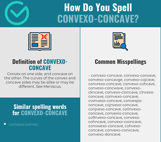 Correct spelling for convexo-concave