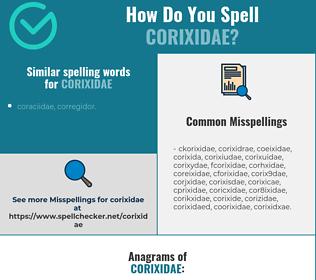 Correct spelling for corixidae