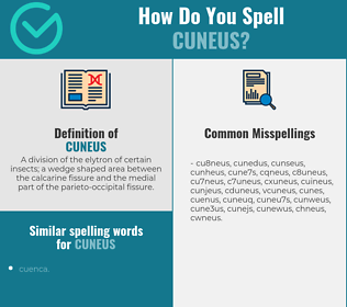 Correct spelling for cuneus