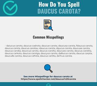 Correct spelling for Daucus Carota