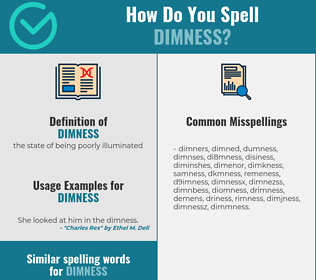 Correct spelling for dimness