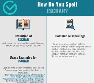 Correct spelling for eschar
