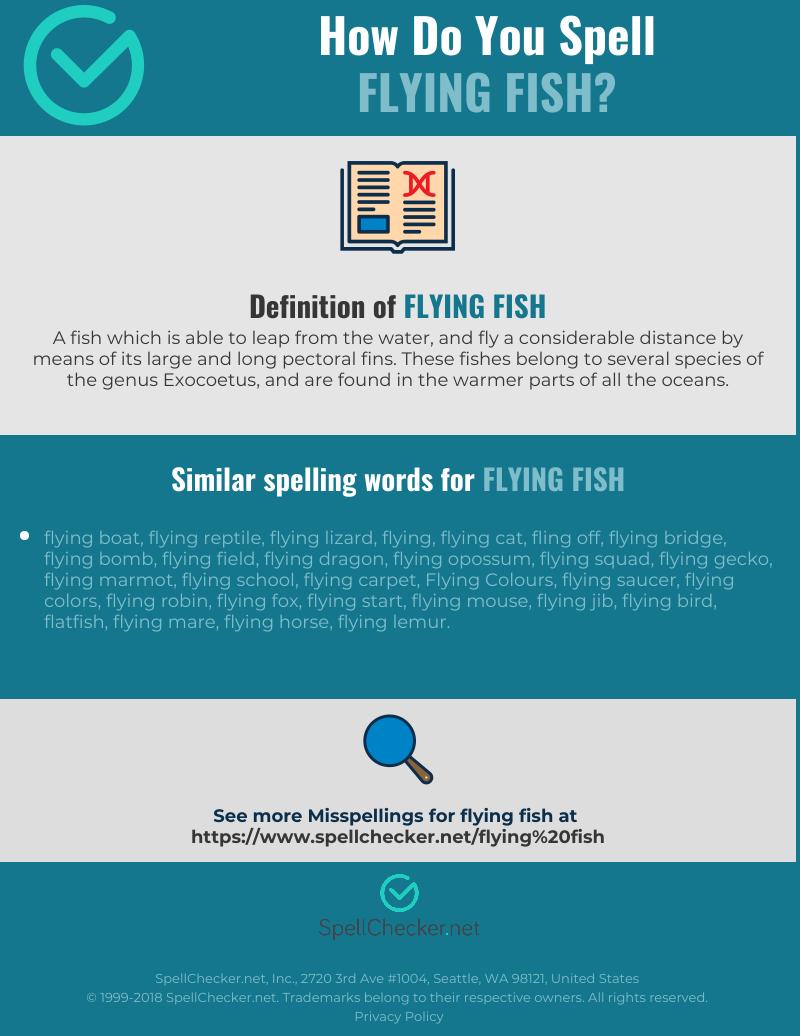 Correct spelling for flying fish [Infographic] | Spellchecker.net