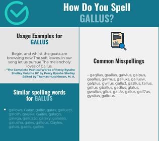 Correct spelling for gallus
