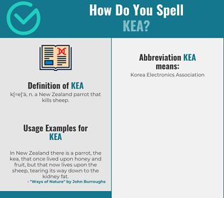 Correct spelling for kea