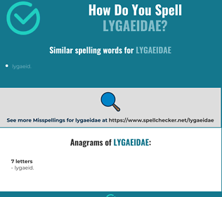 Correct spelling for lygaeidae