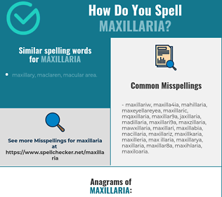 Correct spelling for maxillaria