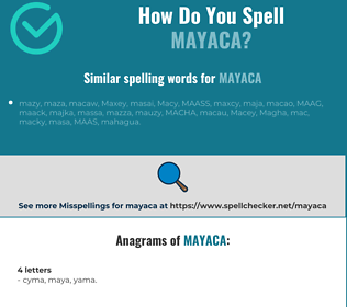 Correct spelling for mayaca