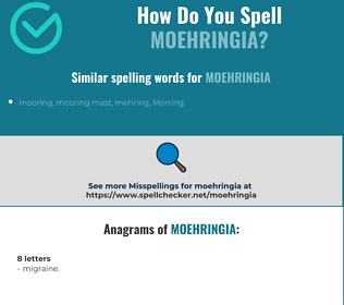 Correct spelling for moehringia