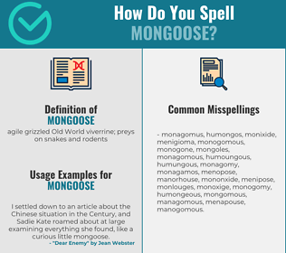 Correct spelling for mongoose
