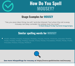 Correct spelling for mousey
