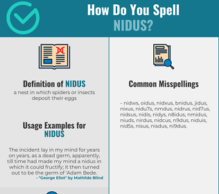 Correct spelling for nidus