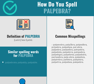 Correct spelling for palpebra