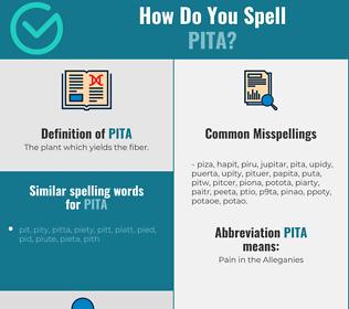 Correct spelling for pita