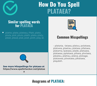 Correct spelling for plataea