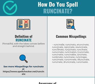 Correct spelling for runcinate