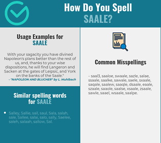 Correct spelling for saale