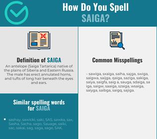 Correct spelling for saiga