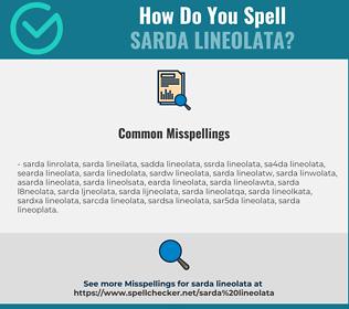Correct spelling for Sarda Lineolata