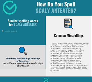 Correct spelling for scaly anteater