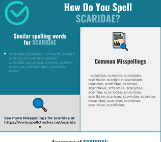 Correct spelling for scaridae