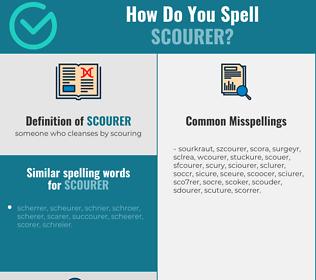 Correct spelling for scourer