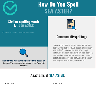 Correct spelling for sea aster