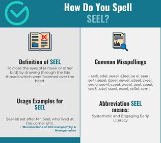 Correct spelling for seel