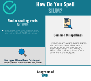 Correct spelling for sium