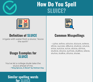 Correct spelling for sluice