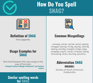 Correct spelling for snag