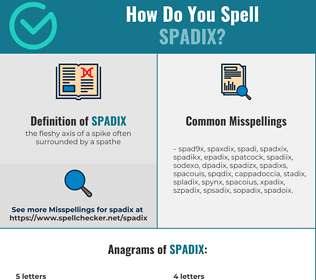 Correct spelling for spadix