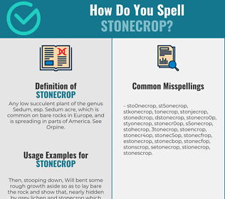 Correct spelling for stonecrop