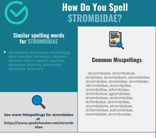 Correct spelling for strombidae