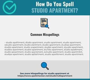 Correct spelling for studio apartment