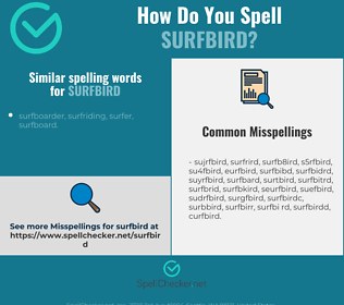 Correct spelling for surfbird