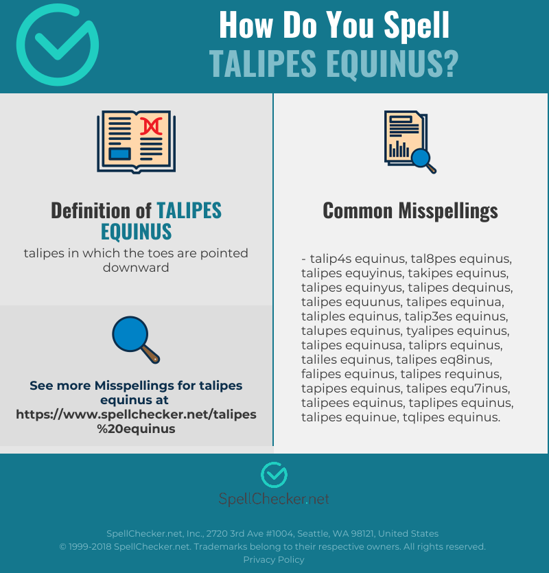 Correct Spelling For Talipes Equinus Infographic Spellcheckernet