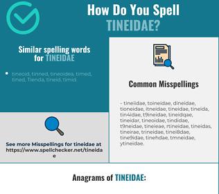 Correct spelling for tineidae
