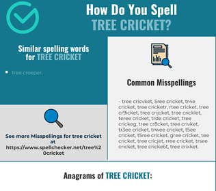 Correct spelling for tree cricket