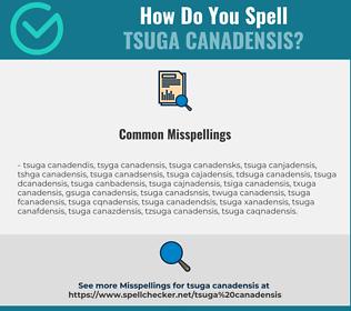 Correct spelling for Tsuga Canadensis