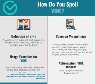 Correct spelling for vine