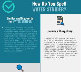 Correct spelling for water strider