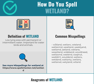 Correct spelling for wetland