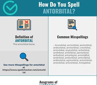 Correct spelling for Antorbital