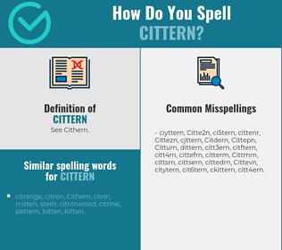 Correct spelling for Cittern