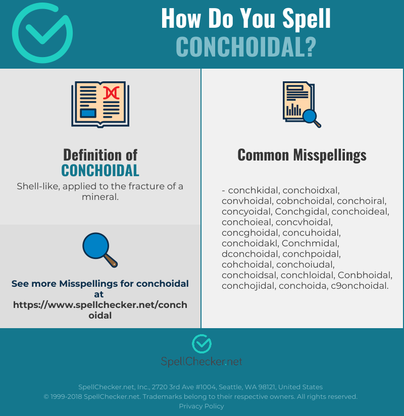 Correct Spelling For Conchoidal Infographic